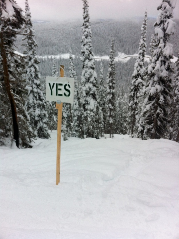 Skiing is the question. Yes is the answer.