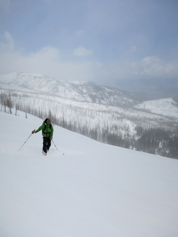powder skiing, backcountry skiing, boot deep