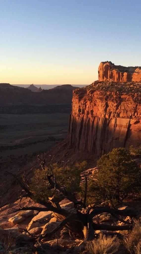 indian creek utah, desert light, wingate sandstone,