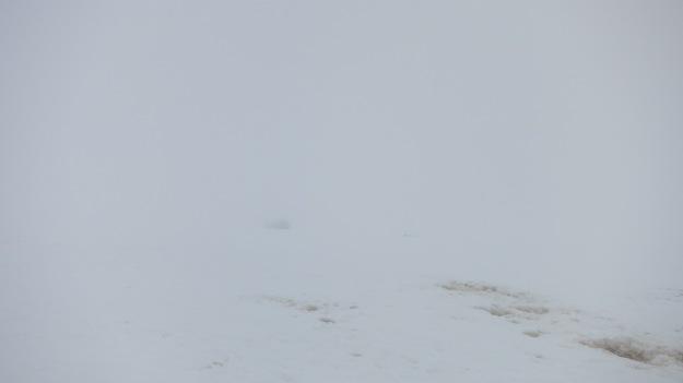 Mt Rainier, weather, whiteout, Mt Rainier National Park.